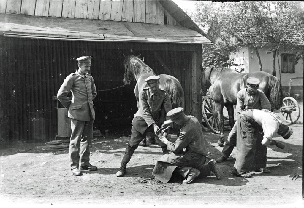 RIR242 skoer heste_mindre