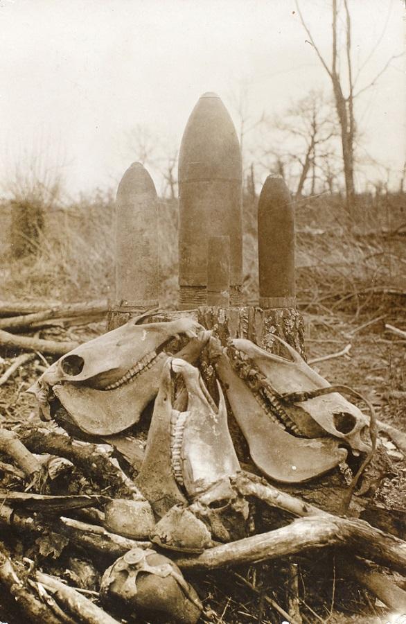 """Hestegravplads. På bagsiden er står:  """"Det er en begravelse af voris Hester Hilsen din Mann Peter Clausen  lad mich viede om du faa disse""""  (Museum Sønderjylland - Sønderborg Slot)"""